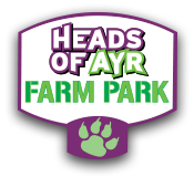Heads Of Ayr Farm Park Promo Code